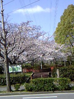 06-04-06_09-52.jpg